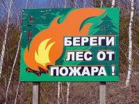 В лесах Ивановской области установлен особый противопожарный режим