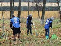 В Ивановской области субботник «Единой России» пройдет 27 апреля во всех муниципалитетах