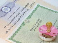Материнский капитал: сертификаты получили более 1 000 семей