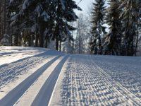 На лыжне в Ижевске и Фурманове