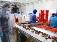 В Ивановской области за год создадут более шести тысяч рабочих мест