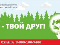 На территории Ивановской области введен особый противопожарный режим