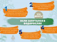 Центр ГИМС ГУ МЧС России по Ивановской области напоминает